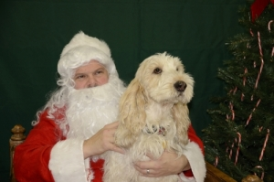 Sitting on Santa's Lap, not sure about this Santa!