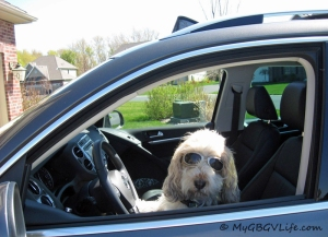 Got busted by mom driving this past summer!