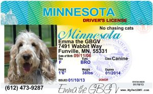 My precious drivers license, yay!