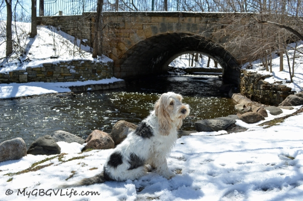 Pretty stone arch bridge over Minnehaha Creek