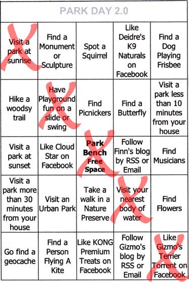bingo-7
